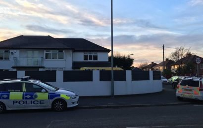 Five people, including girl, 15, savaged in dog attack in Merseyside