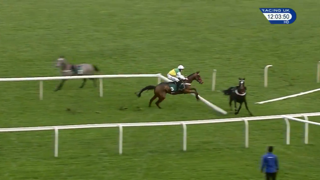 Carnage at Aintree as loose horses smash through rails with odds-on shot crashing out
