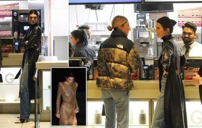 Kendall Jenner gets her fast food fix at McDonald's after London bash