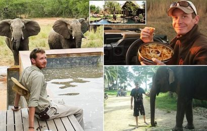 Ranger is crushed to death by sexually charged bull elephant