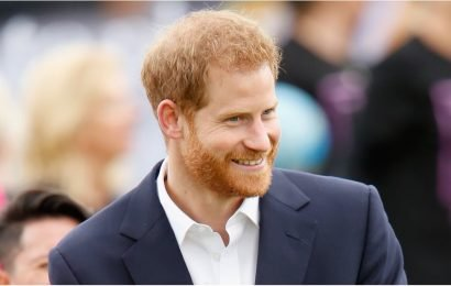 Here Are 29 Prince Harry Facial Expressions For Every Holiday Mood