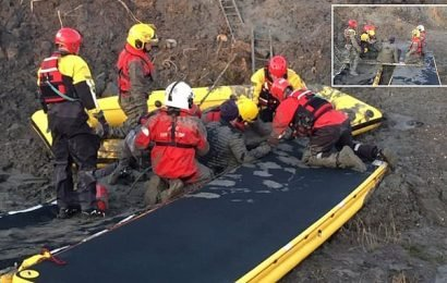 Family rescued by firefighters after getting stuck in the mud
