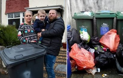 Families paying up to £450 a year for private firms to collect rubbish