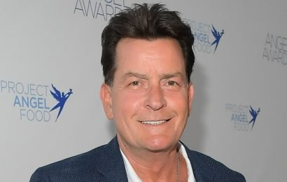 Winning! Charlie Sheen Celebrates 1 Year Of Sobriety After Years Of Partying