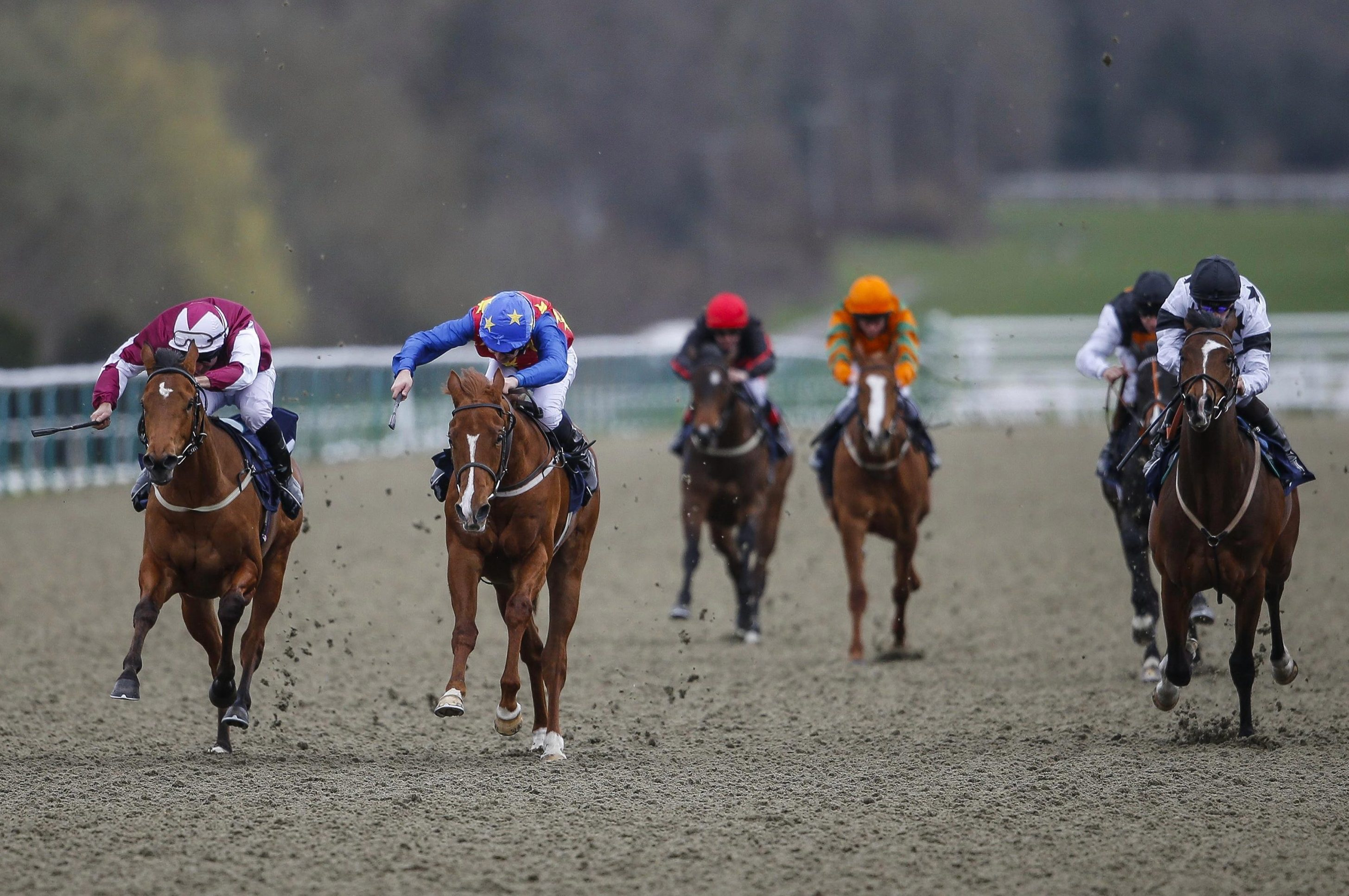 Best horse racing tips for today's action at Lingfield, Southwell and Fakenham from Tom Bull