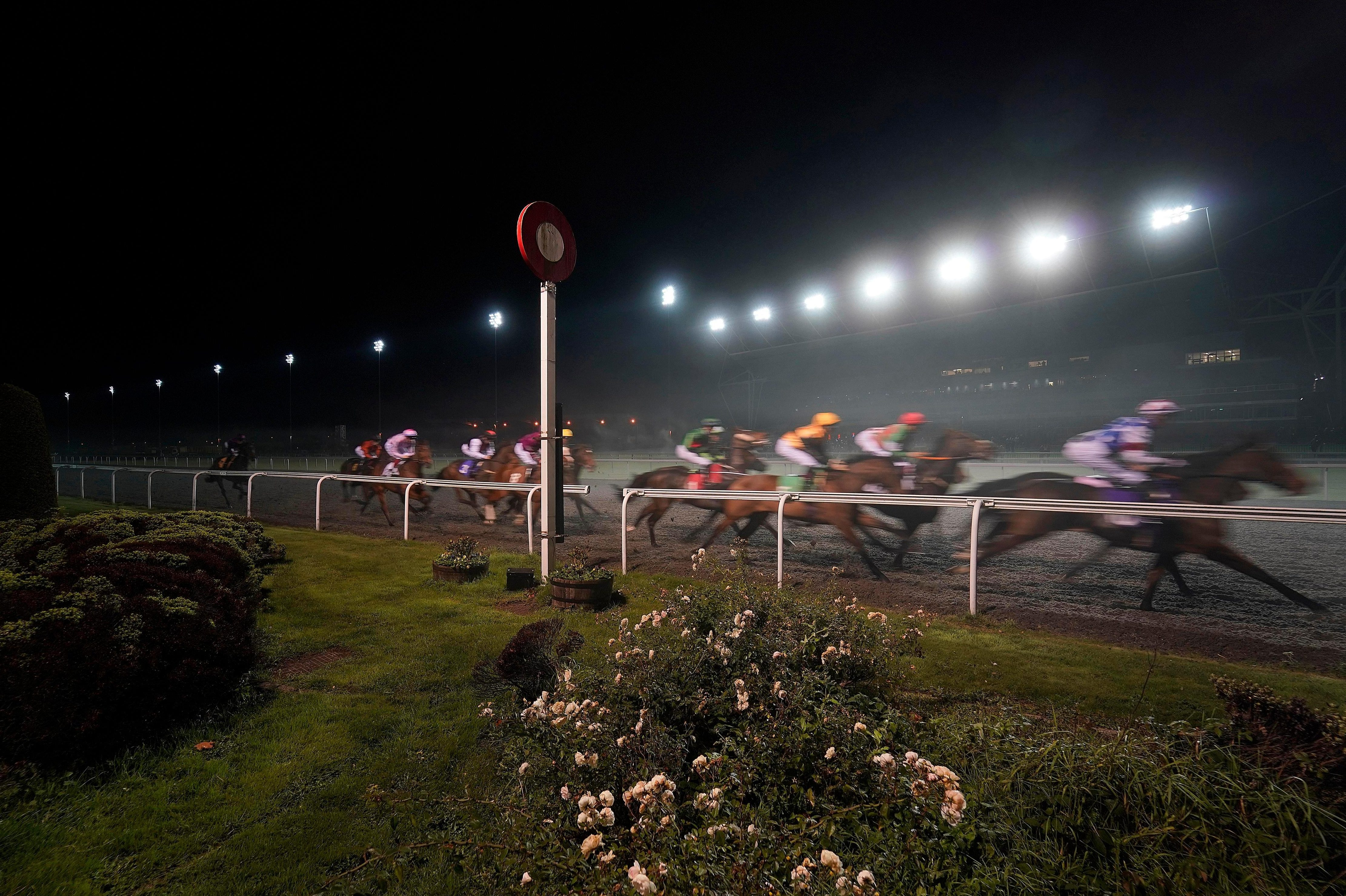 Wednesday's racing tips: A big-priced belter to fill your pockets at Kempton from Jack Keene