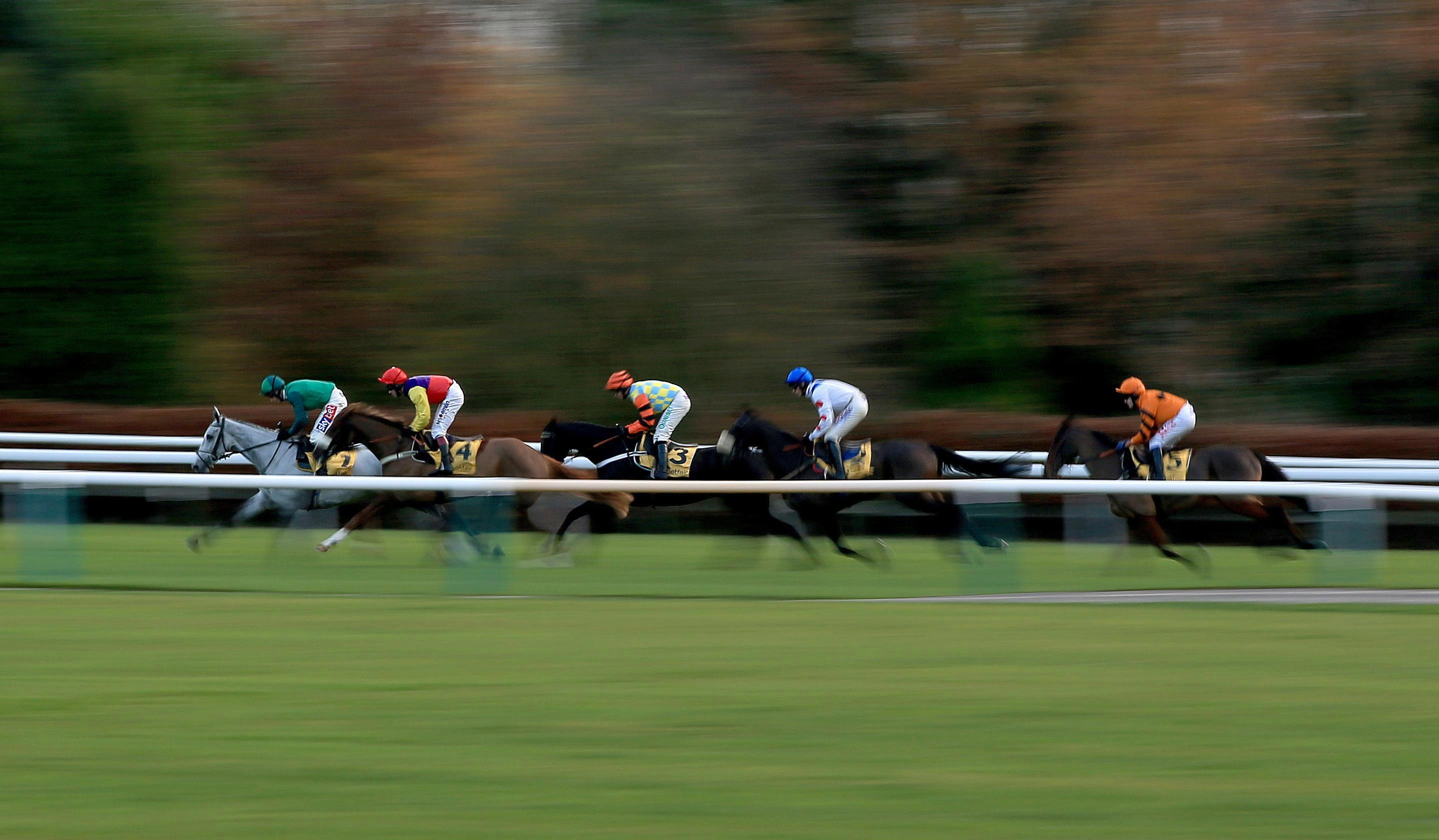 Free horse racing tips for today: Lingfield, Kempton, Newcastle, Haydock and Ludlow – The Wizard of Odds' betting preview for Wednesday, December 4