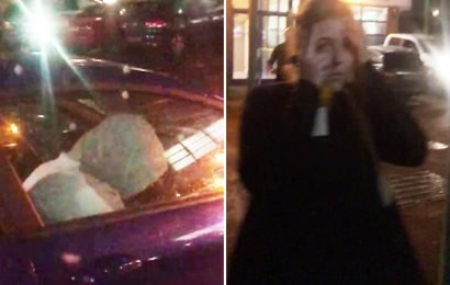 Moment brazen thieves drive off in woman's Fiesta as she watches in shock