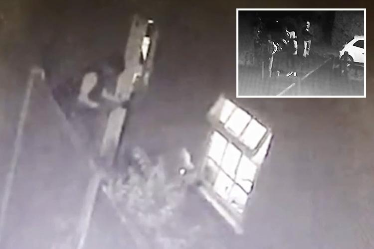 Chilling moment burglars break into OAP's home before she collapses and dies while dialling 999