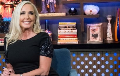 Why Did Shannon Beador Split From Boyfriend Scot Matteson? Drinking Was Reportedly A Factor