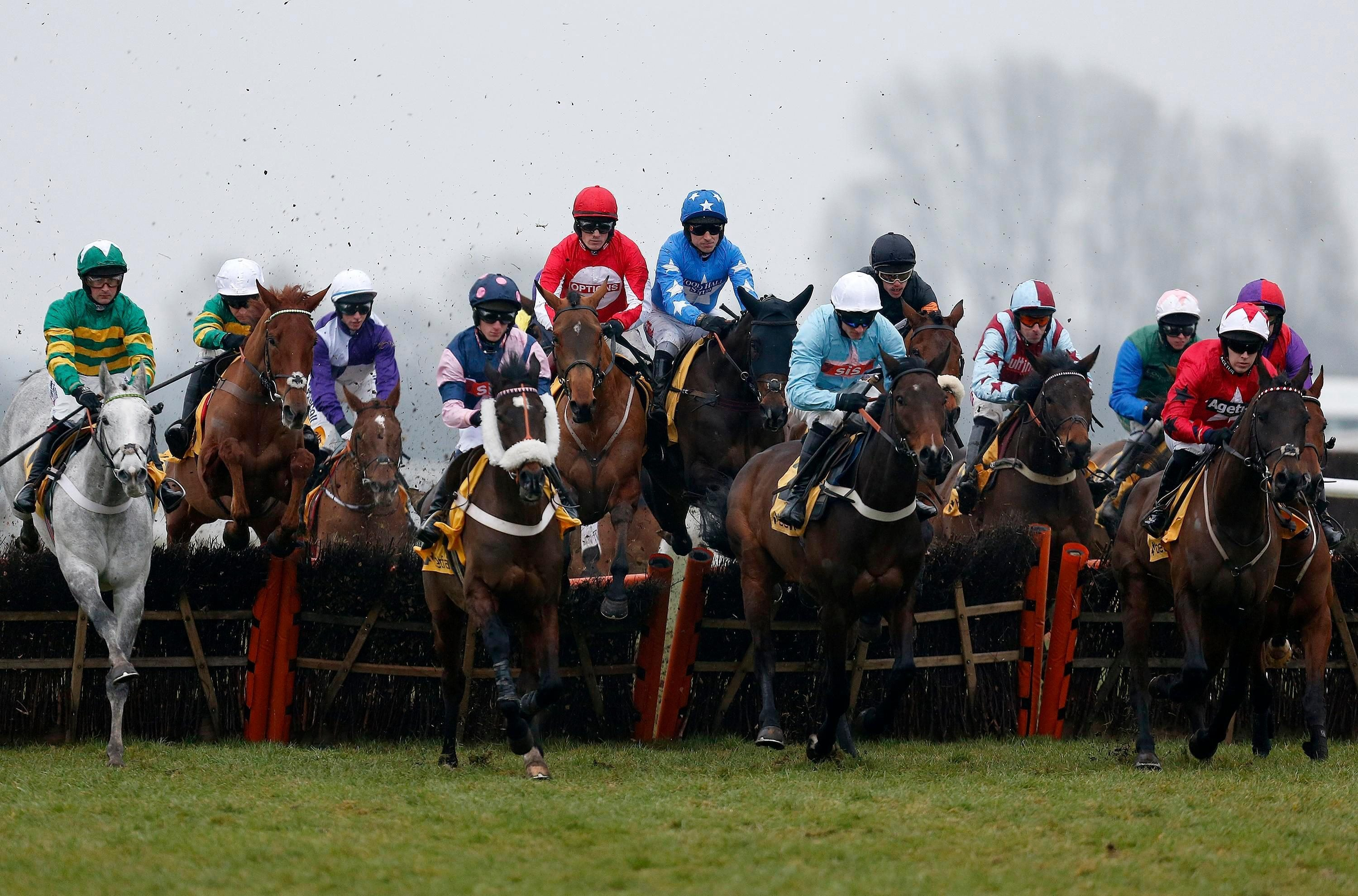Free horse racing tips for today: Lingfield, Musselburgh and Wolverhampton – The Wizard of Odds' betting preview for Monday, December 10