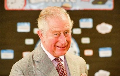 Prince Charles Wants To 'Reform' The British Monarchy When He Becomes King, Like His Disgraced Great Uncle