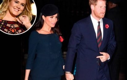 Meghan Markle, Prince Harry and Adele Secretly Spread Holiday Cheer