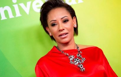 Mel B hospitalized for broken ribs, 'severed right hand'