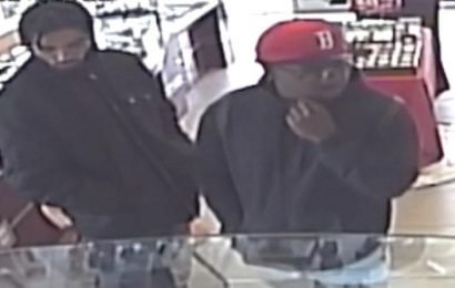 California jewelry store robbery thwarted after owner's nephew pulls out gun
