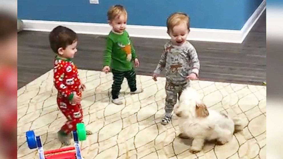 These triplet toddlers chasing their pup is your daily dose of happiness