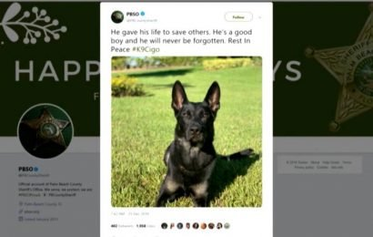 K-9 killed on Christmas Eve as police, robbery suspects exchange gunfire near Florida mall