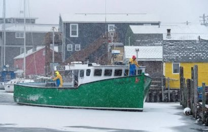 New year, new snow: Storm set to hit Maritimes on New Year's Day