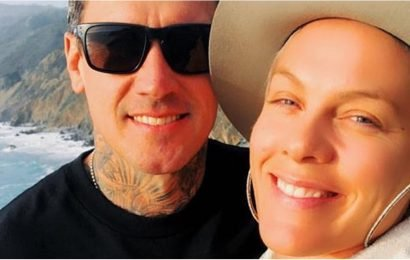 Carey Hart's Anniversary Message For Pink Is So Sweet, He Should Write Hallmark Cards