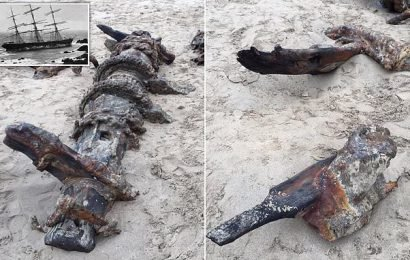 Shipwreck washes ashore on beach more than 120 years after sinking