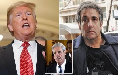 Mueller says BuzzFeed story Trump directed Cohen to lie is FALSE