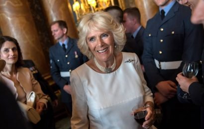 50+ Photos of Camilla, Duchess of Cornwall's Life —Before and After the Royal Title