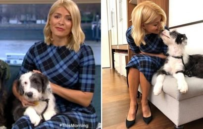 Holly Willoughby breaks down in tears twice as she's introduced to cute puppies in need of being rehomed