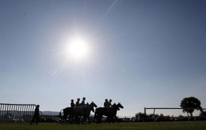 Best horse racing tips for today's action at Ludlow, Market Rasen, Newcastle and Wincanton from Tom Bull