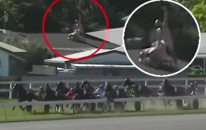 Racing fans caught 'having sex' on rooftop as horses fly past in bizarre sideshow