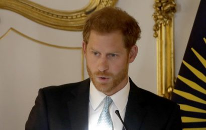Prince Harry Just Gave the Sweetest Speech About His Future as a Father