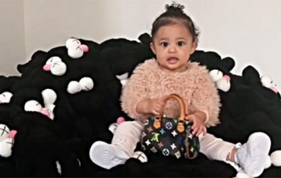 Kylie Jenner Shares New Video Of Stormi Holding Her $2K Louis Vuitton Purse & She Looks So Grown Up