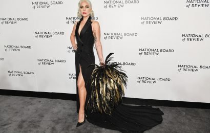 Lady Gaga's mysterious feather accessory puzzles fans