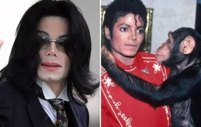 Michael Jackson accused of savagely beating Bubbles the chimp 'punching him in the face and kicking him in the stomach