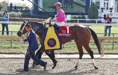 2019 Pegasus World Cup predictions: Expert picks for win, place, show, trifecta, superfecta
