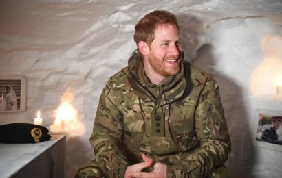 Prince Harry giggles at 'shrine' in Arctic igloo – including photos of Meghan