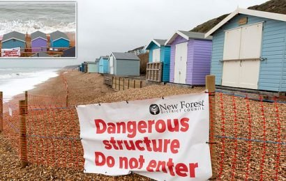Beach hut owners furious after council demands they tear down £1m huts
