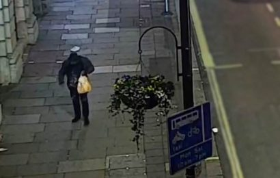Ski goggle-wearing man who 'splashed white paint on London memorials'