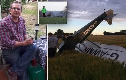 Pictured: Pilot, who was killed in crash while flying his light plane
