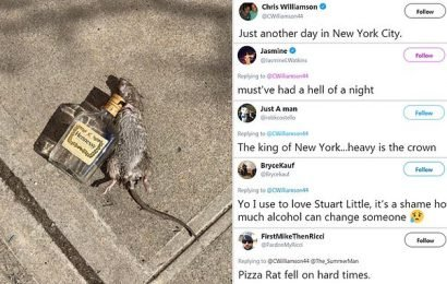 Bizarre photo of NYC rat clutching empty bottle of Hennessy goes viral
