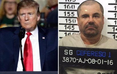 Make El Chapo pay for Trump's border wall Senator Ted Cruz demands as he proposes bill to use drug lord's £12 billion fortune to fund migrant controls