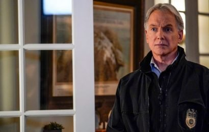 'NCIS:' The 1 Reason Mark Harmon Prefers Working on the Show to a Movie Career