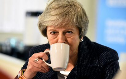 Theresa May will see Brexit deal go down in flames if she doesn't ditch backstop and go for Tory 'Plan C', top MPs warn