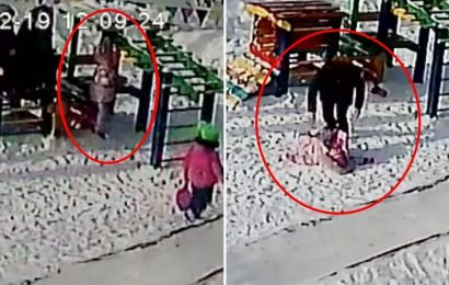 Girl, 4, nearly dies after accidentally getting coat's hood caught on nursery school climbing frame slowly strangling her