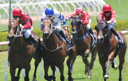 Race-by-race guide and tips for Canterbury Park on Friday night