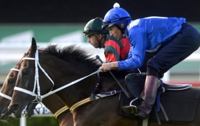 'Not now, not ever': Rival owner concedes Winx is unbeatable