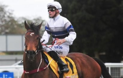 Noble Descent's chance to turn tables on Spunlago