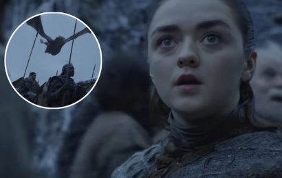New 'Game of Thrones' Season 8 Footage Shows Arya Impressed by Drogon