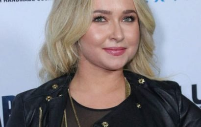 Hayden Panettiere Hasn't Seen Much Of Her 4-Year-Old Daughter Recently