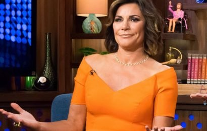 Luann De Lesseps Allegedly Violates Probation By Not Proving She's Attending AA