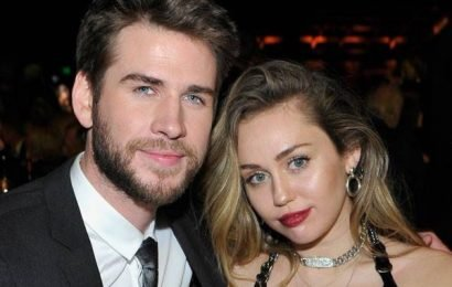 Liam Hemsworth Can't Stop Pranking Miley Cyrus: See His Best Pranks